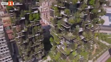 Зелена светлина: Вертикалната гора в Милано