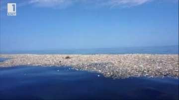 Зелена светлина: боклученият остров