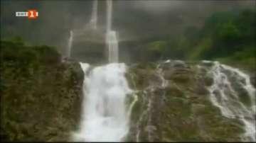 Зелена светлина - най-дъждовното място на планетата