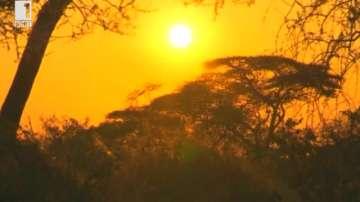 Зелена светлина: Североизточна Танзания и народът Хадза