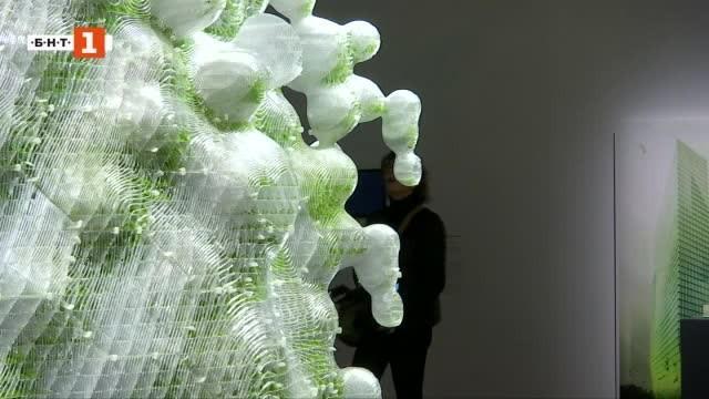 Зелена светлина: Ароматите на изчезналите растения