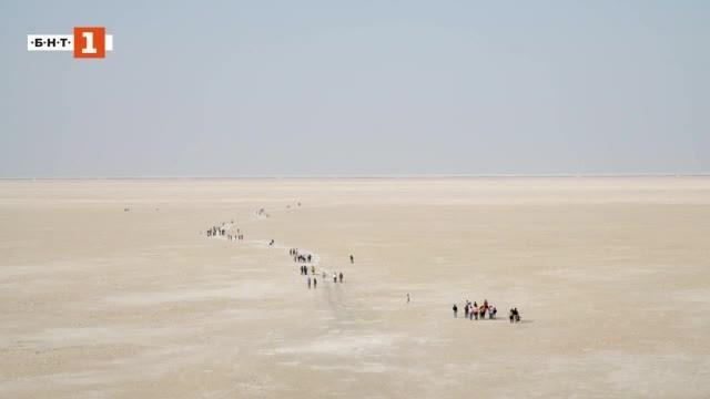 Снимка: Зелена светлина: Куч - солната пустиня на Индия