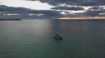 Зелена светлина: Първата електрическа яхта за наблюдение на морски бозайници