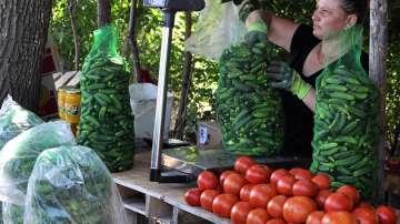 Спад в цените на зеленчуците преди Гергьовден