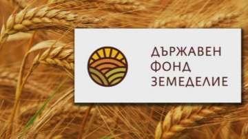 Избраха ново ръководство на Държавен фонд Земеделие