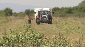Брекзит и последиците за земеделския сектор у нас
