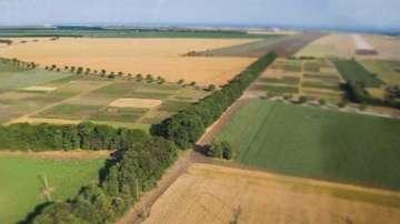 Земеделската земя е поскъпнала с около 5 процента