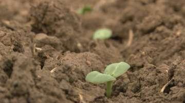 Министерството на земеделието и храните подготвя промени в Закона за земята