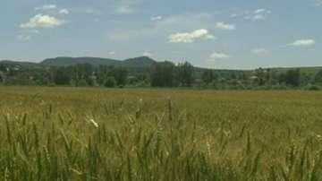 Нов зрителски сигнал за измама със земеделски земи