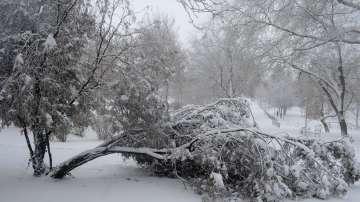 Френски туристи бедстваха в снега на път за Рилския манастир