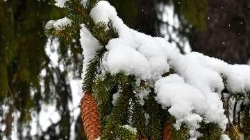 Жълт код за снеговалежи в 6 области на Северна България
