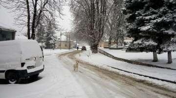 Зимата се завърна, а най-много сняг падна в Смолянско