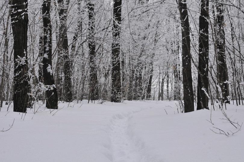 снежната покривка връх ому румъния достигна