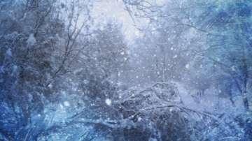 Всички основни пътни участъци са проходими при зимни условия