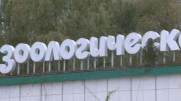 Какви изненади да очакват посетителите на зоологическите градини в София и Варна