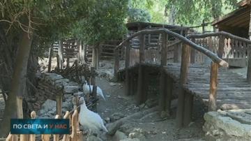 Българските зоопаркове не отговарят на европейските стандарти